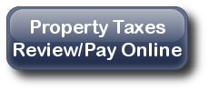 Review or Pay your Taxes Online
